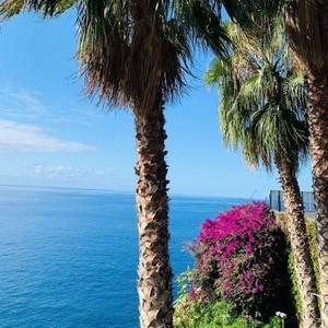 Punkt widokowy w Camara de Lobos. Przepiękny widok na horyzont Oceanu, ale również można podziwiać różne kolory cudownego krzewu Buganvilia, który pochodzi z Ameryki południowej.