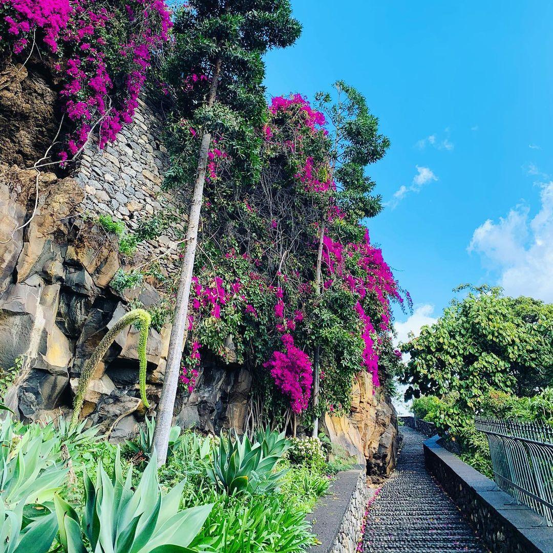 Schodami do parku Santa Catarina w Funchal. Można w nim zobaczyć kapliczkę św. Katarzyny wybudowaną w 1425 roku oraz pomnik Krzysia Kolumba.