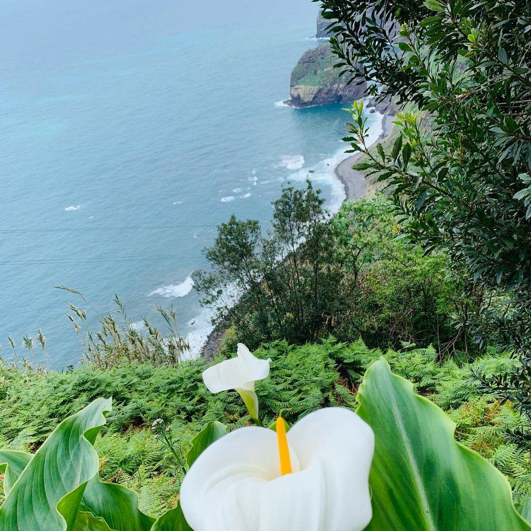 Santana została uznana za Światowy Rezerwat Biosfery przez UNESCO 29 czerwca 2011 r., w ramach programu Człowiek i Biosfera. Program ten ma na celu ochronę dziedzictwa naturalnego i rozwój społeczeństw. Wycieczka wschodnia. Zapraszam☀️
